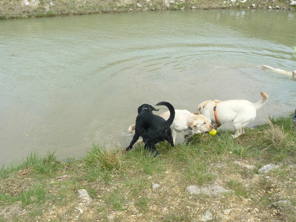 Habt ihr gedacht, wir können nicht schwimmen?