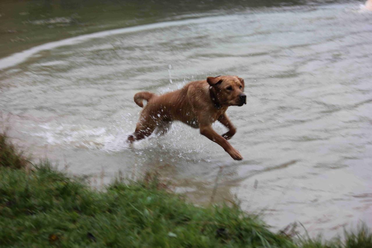 Sancho, der auf dem Wasser läuft.