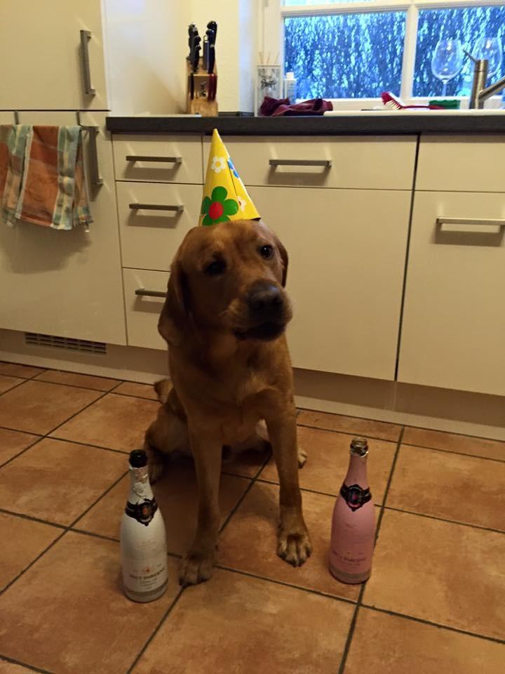 6. März 2016: Mein dritter Geburtstag wird kräftig gefeiert.