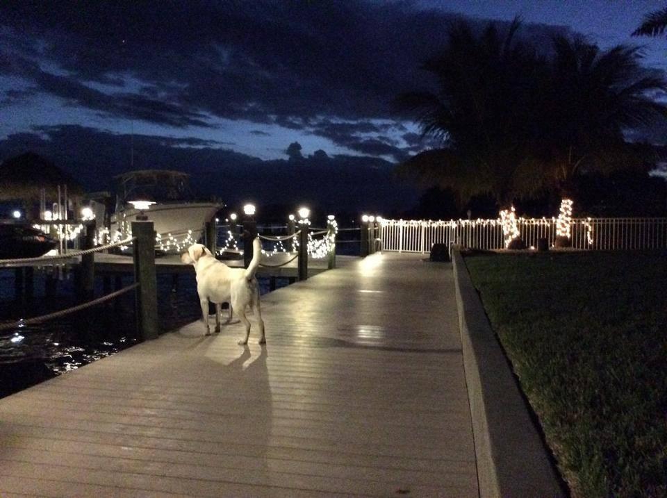 Florida, 6. Dezember 2014: Von dort müsste der Nikolaus kommen.