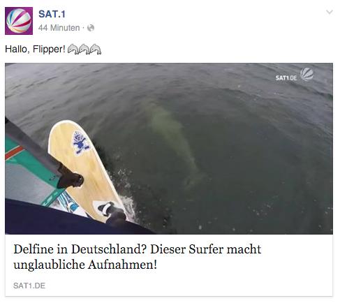 SAT1 Facebook + TV