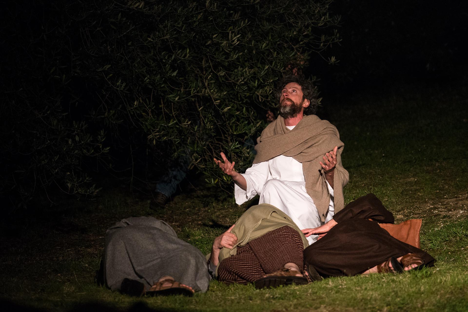 GESU' SVEGLIA GLI APOSTOLI CHE SI ERANO ADDORMENTATI