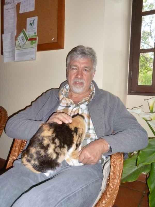 Katze im Teehaus in Prazeres, Urlaub Madeira März 2015