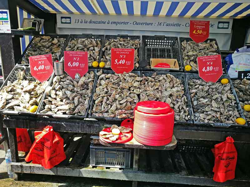Bild 3 Austern schlemmen überall in Cancale