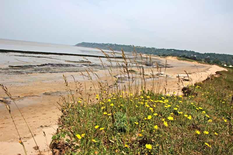Bild 10 Am Strand von Dragey Ronthon