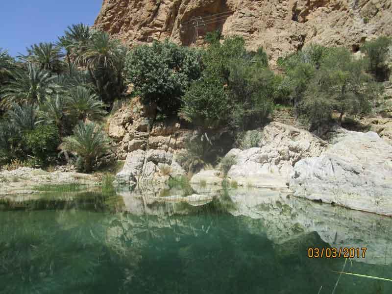 Bild 12 Naturpool an der Einfahrt ins Wadi Bani Khalid
