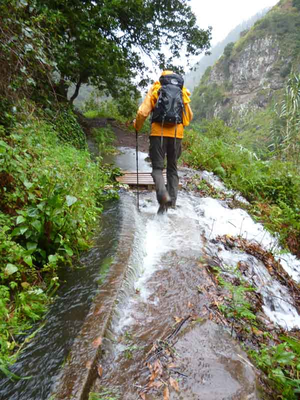 Bild 18 Wanderung auf der Levada Nova und der Levada Mohino