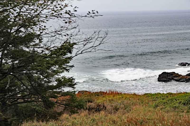 Bild 7 Weiter auf der 101 in den Süden in Oregon, immer wieder tolle Blicke aufs Meer