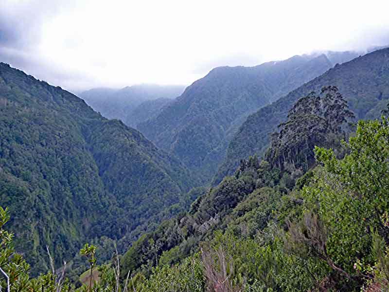 Bild 6 Blick ins Tal von der Levada da Ribeira