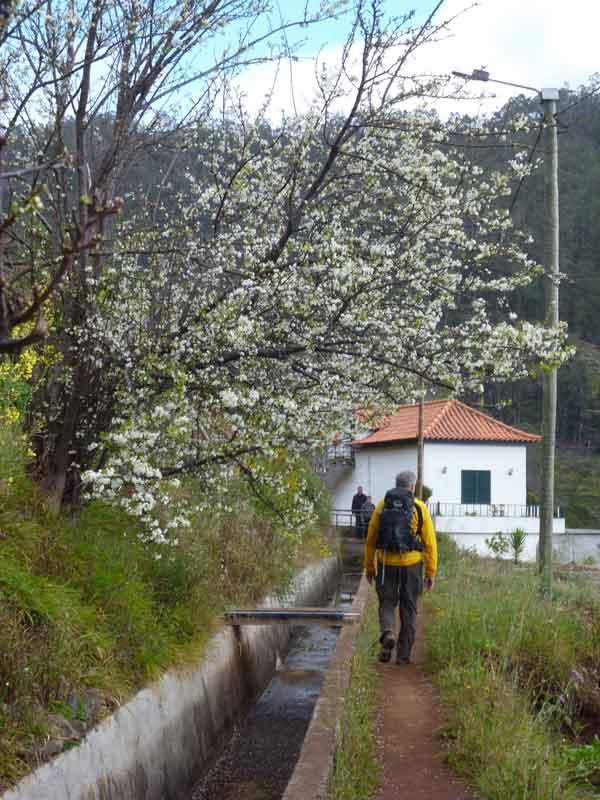 """Bild 12 Auf dem Levadaweg """"do Norte"""""""