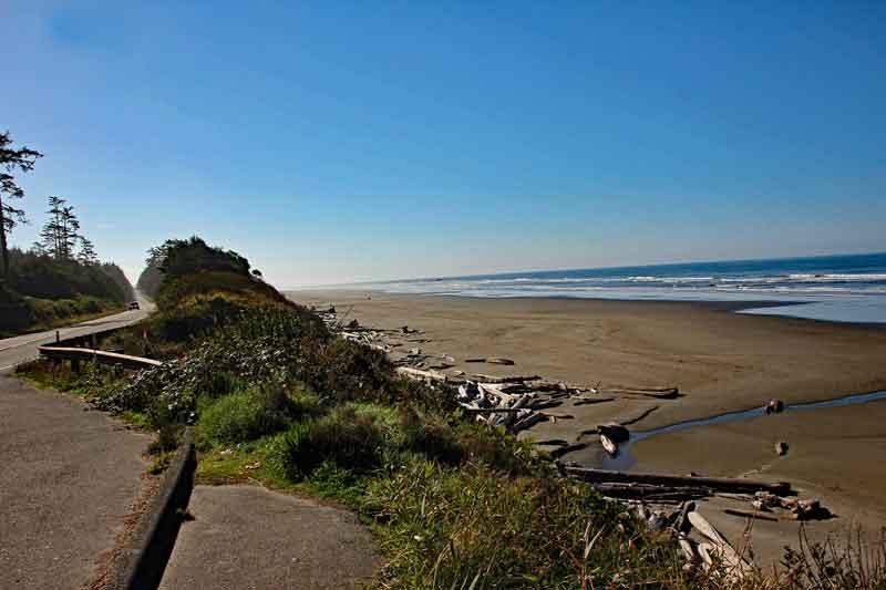 Bild 2 An der Küste des Pacifics, mit vielen angespülten Baumstämmen