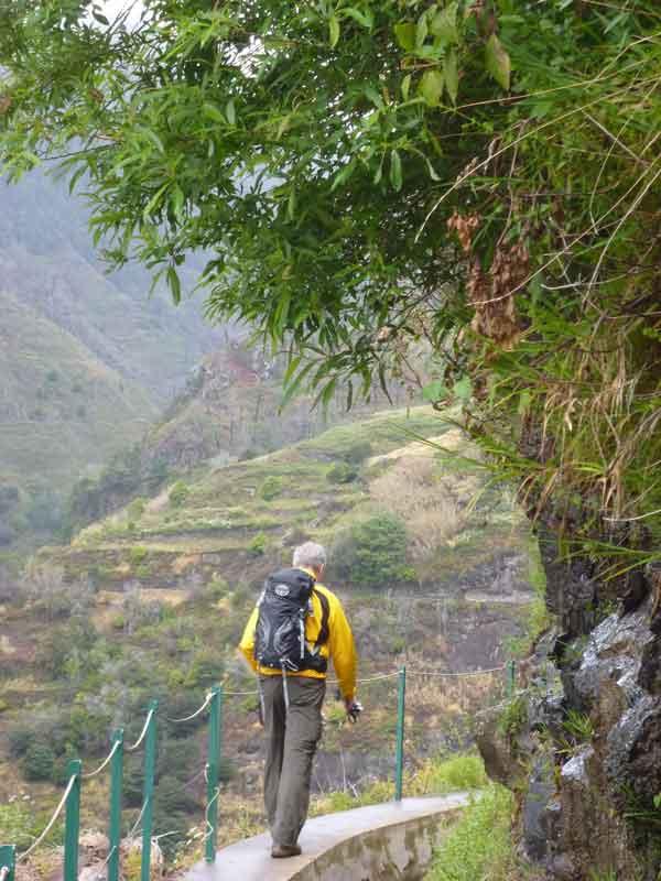 Bild 7 Wanderung auf der Levada Mohino und zurück auf der Levada Nova