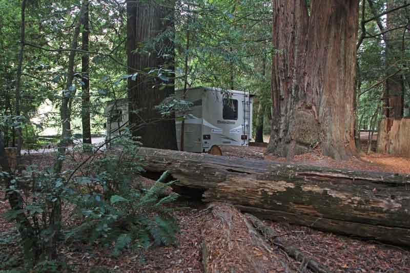 Bild 1 Morgens im Jedediah State Park Campground