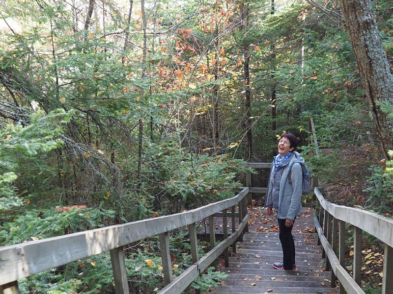 Bild 20 Wanderung durch einen kleinen naturbelassenen Park