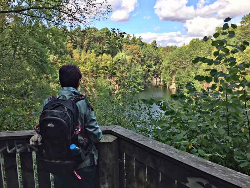 Bild 4 Blick auf den Oberwaldsee im Naturschutzgebiet