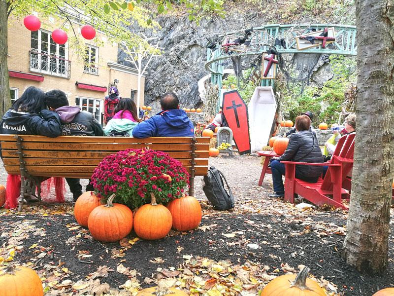 Bild 19 Überall ist geschmückt für Halloween
