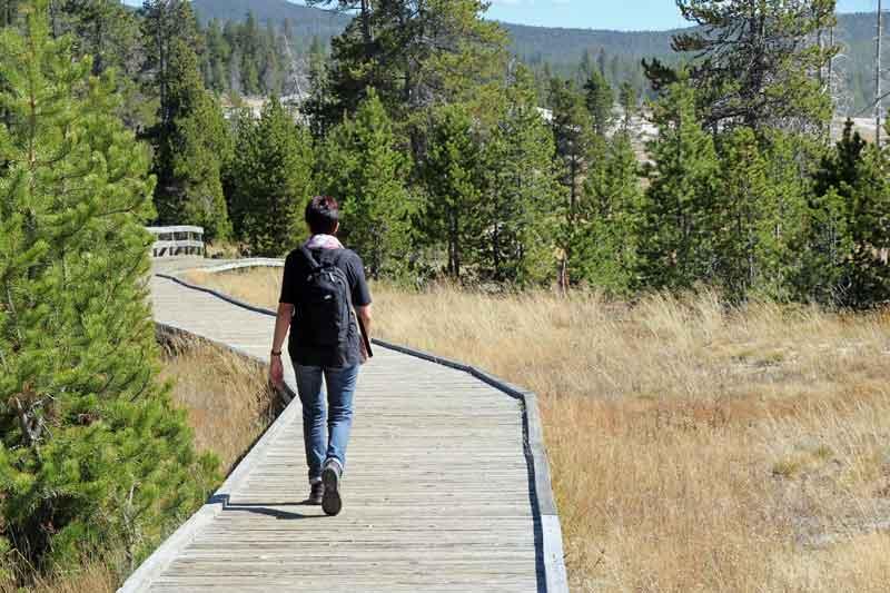 """Bild 13 Wanderung rund um """"Old faithful"""" im Yellowstone National Park"""