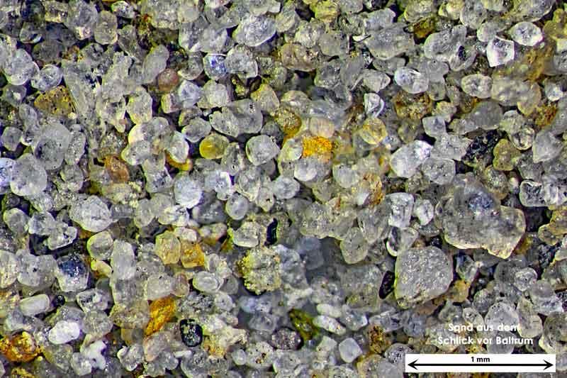Bild 1 Sand aus Baltrum/Deutschland aus dem Wattbereich, Objektiv Zeiss Plan 2,5/o,o8 Auflicht