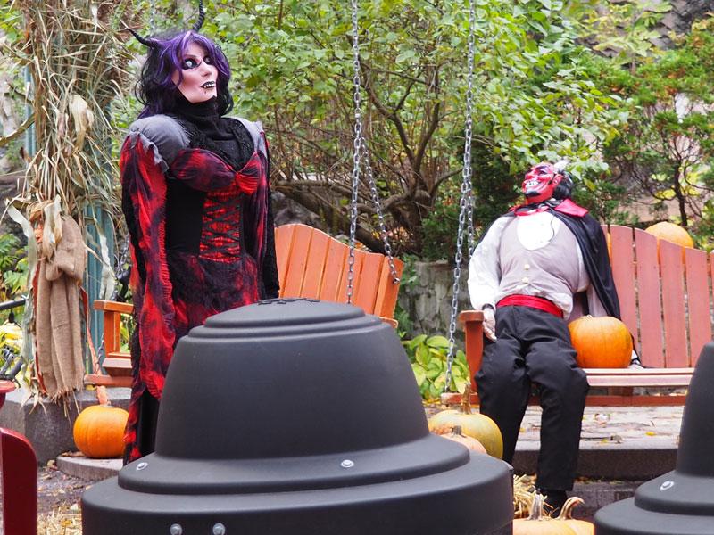 Bild 12 Überall ist geschmückt für Halloween