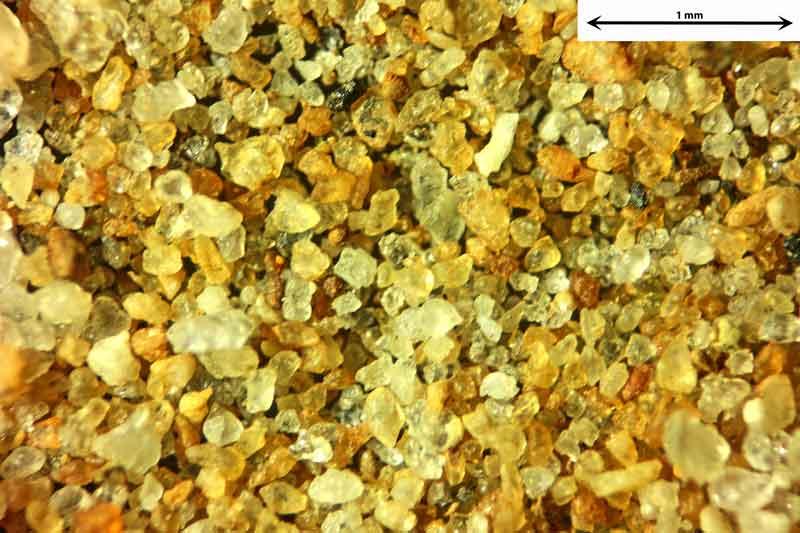 Bild 1 Sand aus Sylt-Morsumer Cliff/Deutschland Ablagerungen, Objektiv Zeiss Plan 2,5/o,o8 Auflicht