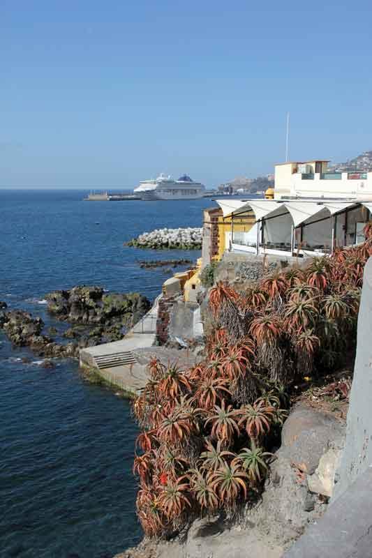 Bild 17 Blick auf die Küste von Funchal
