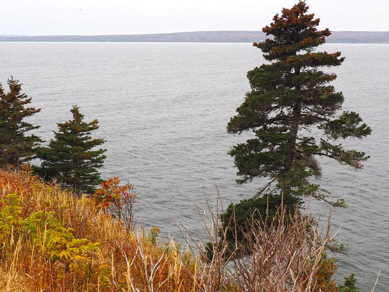 Bild 9 Unterwegs an den Klippen entlang, immer mit einem Blick aufs Meer