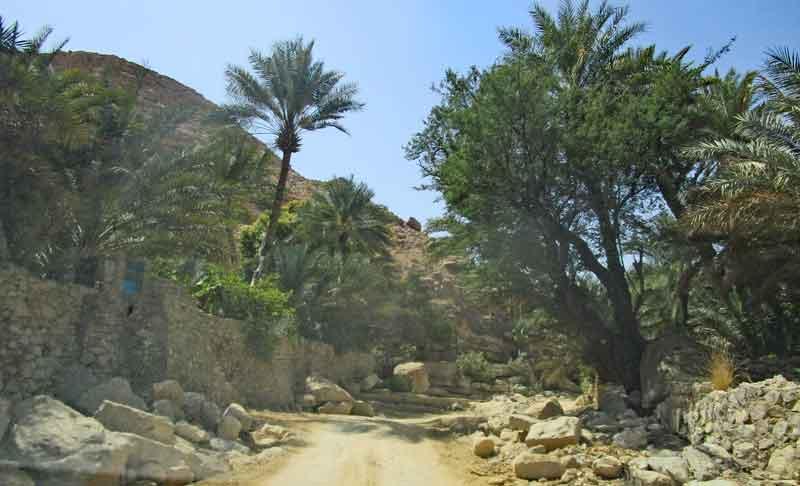 Bild 13 Letztes Straßenstück ins Wadi Bani Khalid