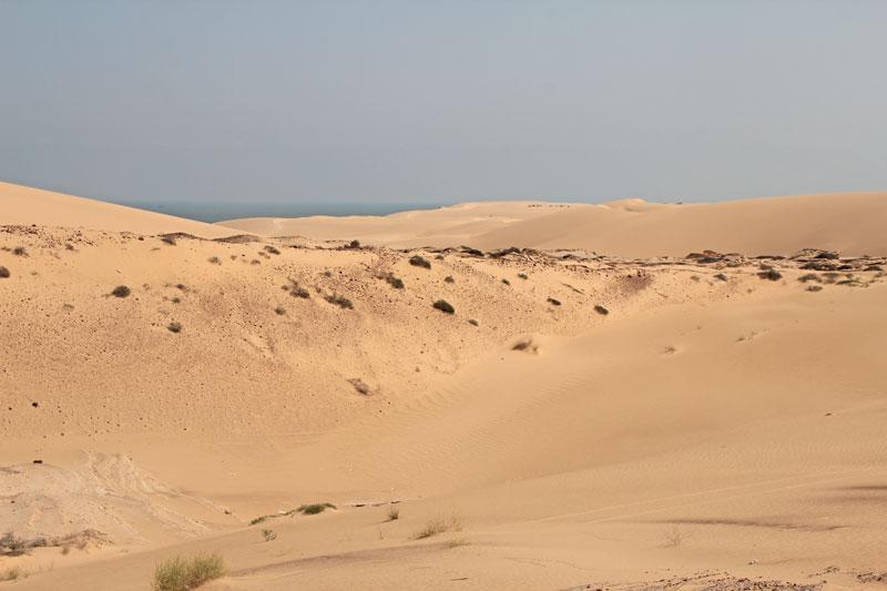 Bild 8 Blick auf die Wüste