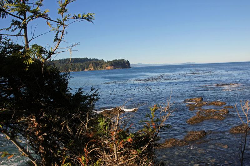Bild 5 Blick auf die Küste der Olympic Peninsula