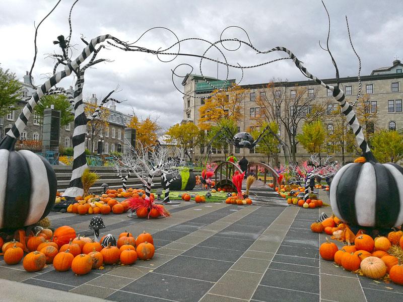 Bild 17 Überall ist geschmückt für Halloween