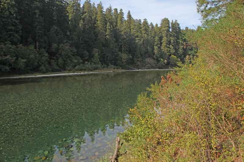 Bild 25 Blick auf den Fluß von unserem Stellplatz aus im Jedediah Campground