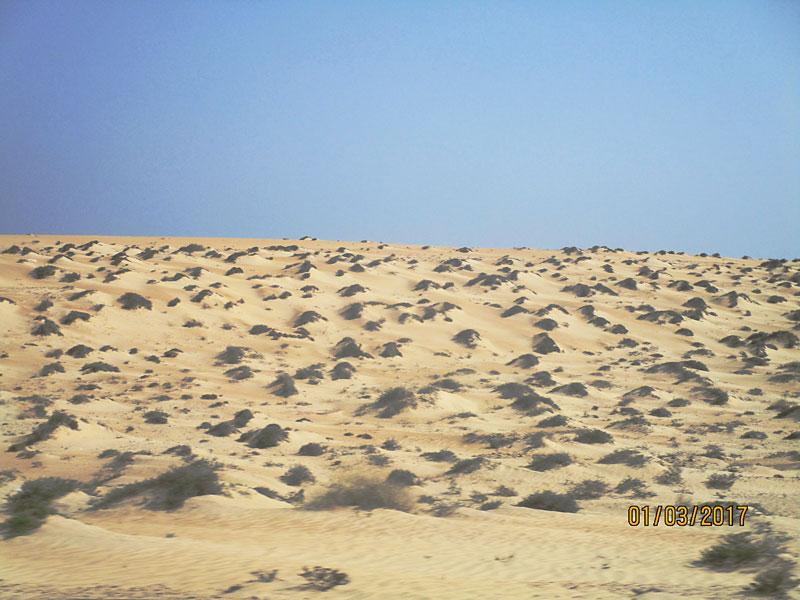 Bild 7 Blick auf die Wüste und das Meer