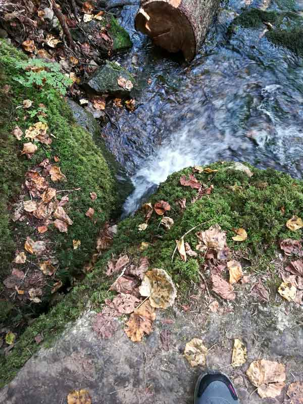 Schwarzwald, Wutach, Gauchach, Engeschlucht, Donaueschingen