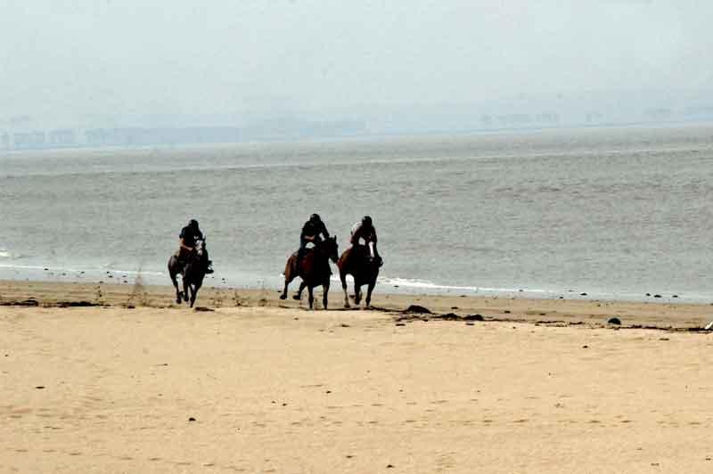Bild 6 Pferdeausreiten am Strand von Dragey Ronthon