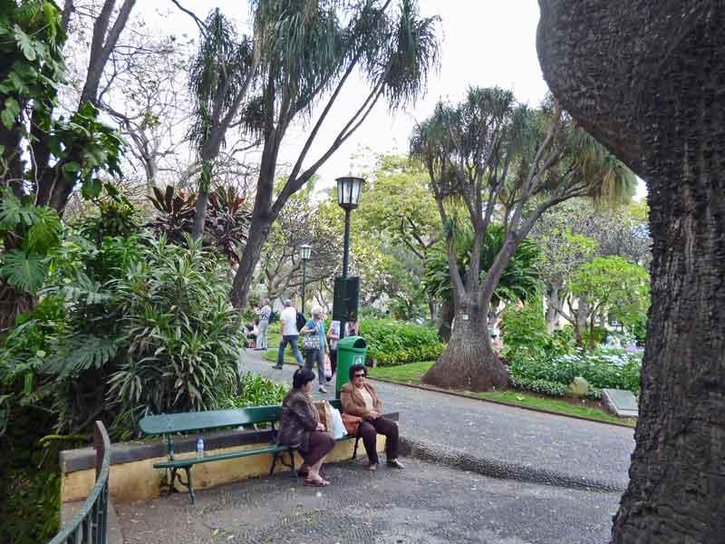 Bild 36 In den Straßen von Funchal
