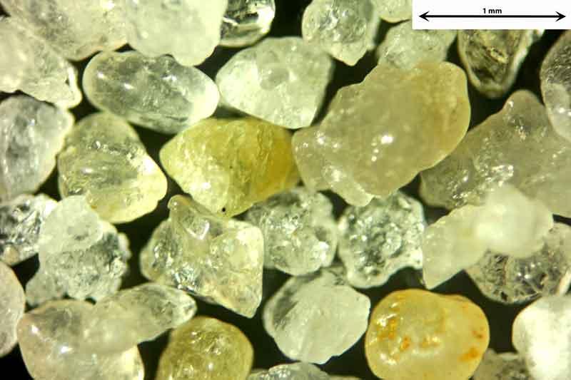 Bild 1 Sand aus Sylt-Ellenbogen/Deutschland von Meeresseite, Objektiv Zeiss Plan 2,5/o,o8 Auflicht