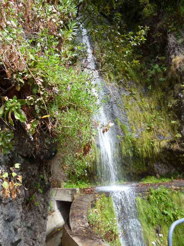 Bild 19 Wanderung auf der Levada Nova und der Levada Mohino