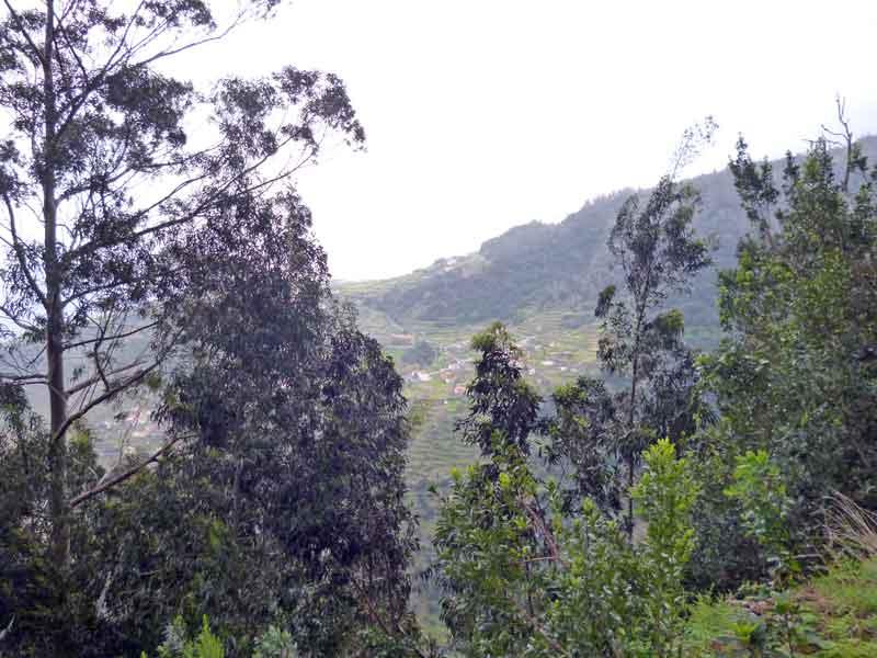 Bild 7 Blick ins Tal von der Levada da Ribeira