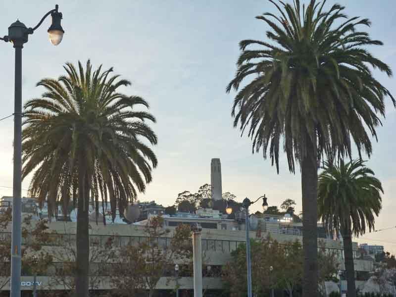 Bild 22 Blick auf den Coit Tower auf dem Telegraph Hill in San Francisco