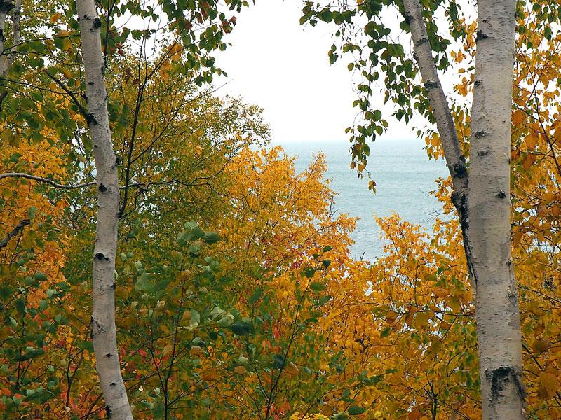 Bild 5 Blick zwischen den Bäumen auf den St. Lorenz