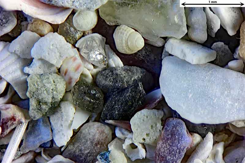 Bild 3 Sand aus Radoy Norwegen