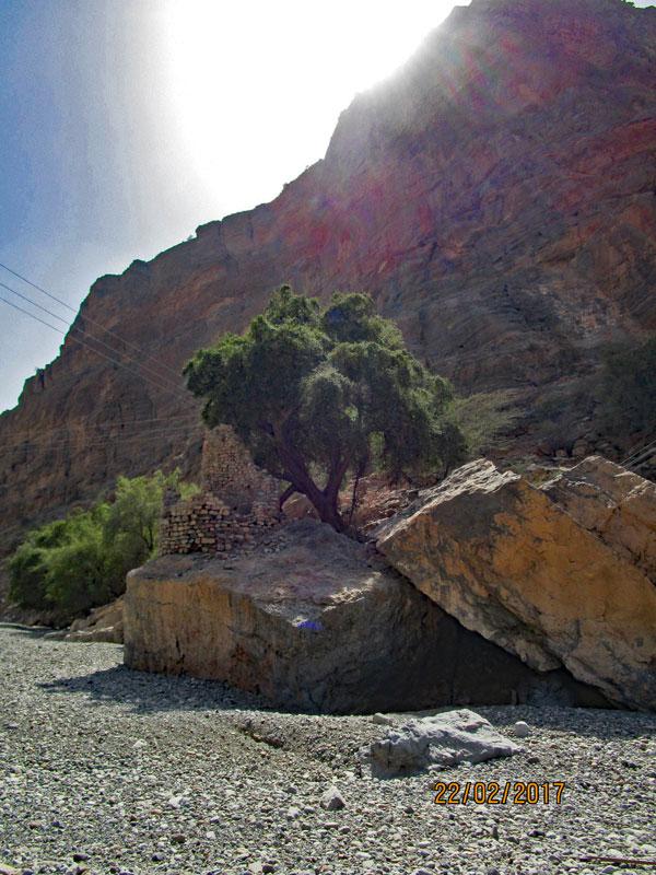 Bild 12 Am Ende des Wadis Blick auf eine alte (vermutlich Zisterne)