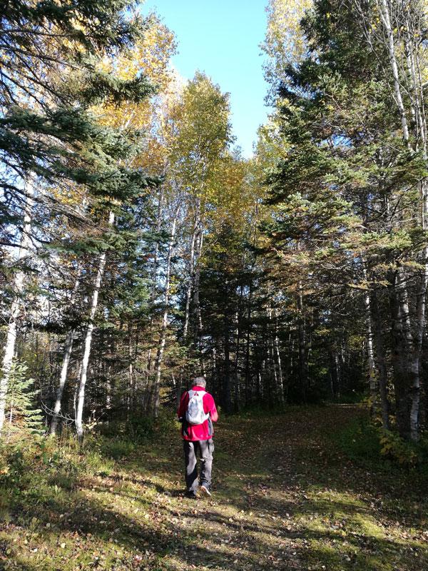 Bild 14 Kleine Wanderung auf dem Campground
