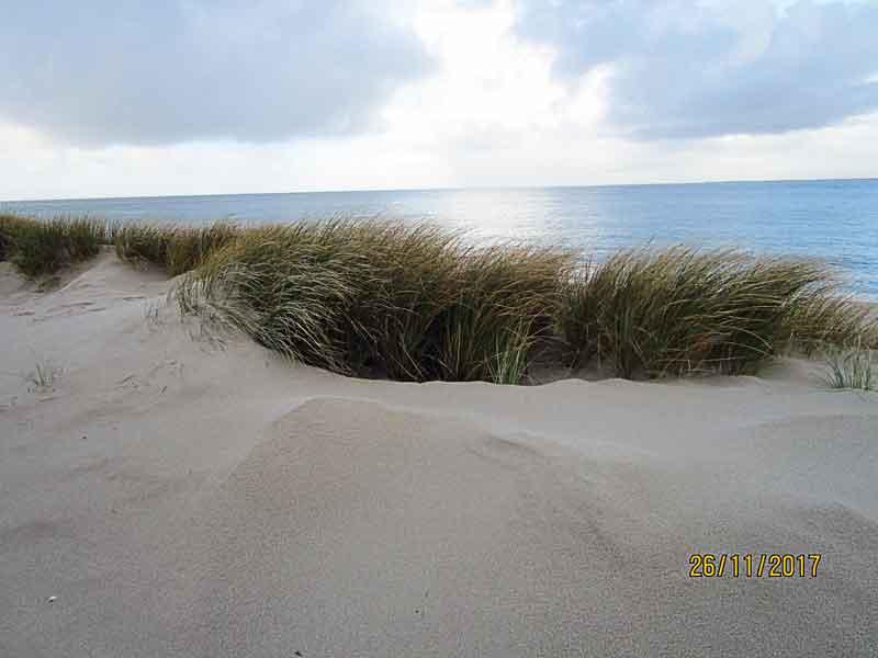 Bild 12 Blick aus den Dünen