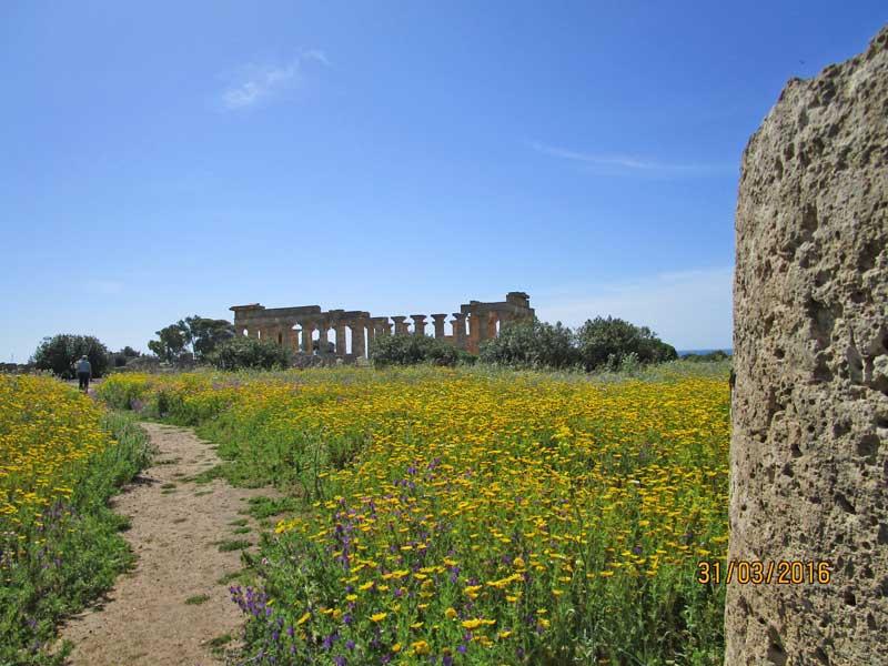 Pinien, Meer und Blick auf die Tempelanlage in Selinunte
