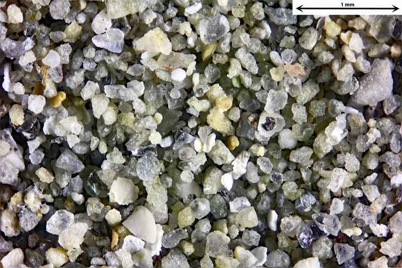 Bild 4 Sand aus Wendelsheim mit fossilen Foraminiferen