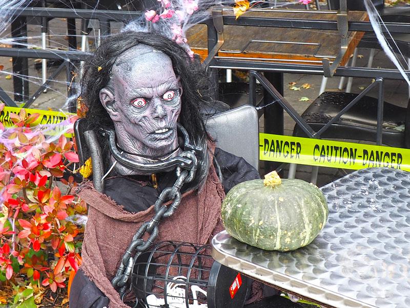 Bild 9 Überall ist geschmückt für Halloween
