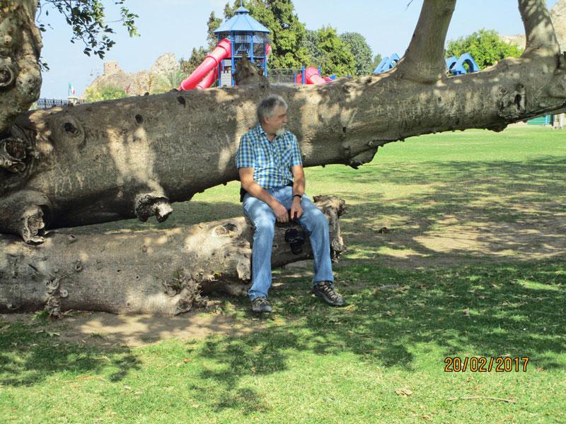 Pause im Park von Mutrah