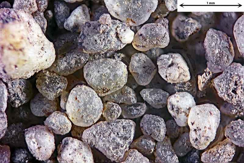 Bild 3 Sand aus Wald bei Hergershausen
