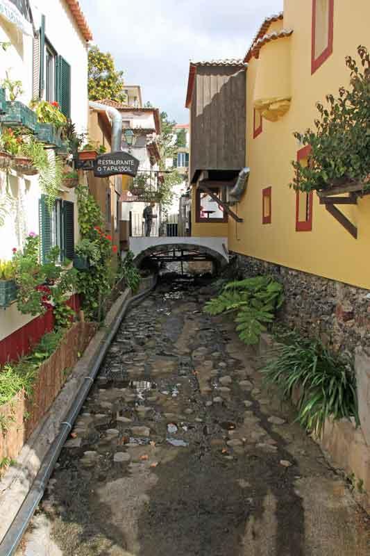 Bild 14 In den Straßen von Madeira